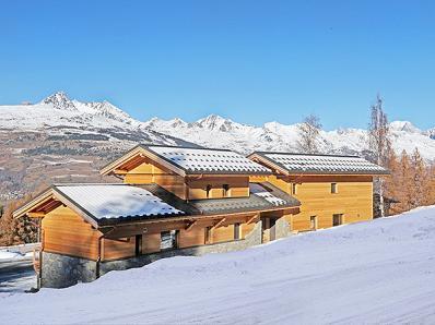 Chalet Ski Dream - Chalet + Mont Blanc