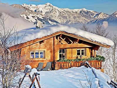 Chalet Alpengold Zillertal