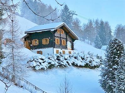 Ski-Chalet Nendaz